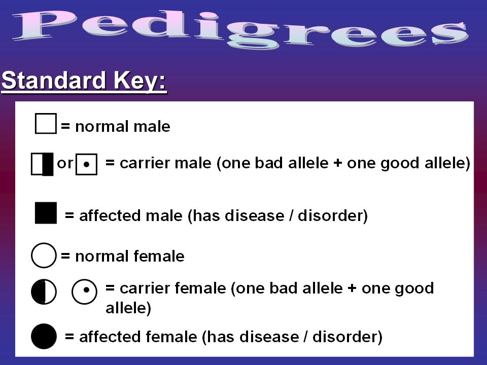 Pedigrees Standard Key: