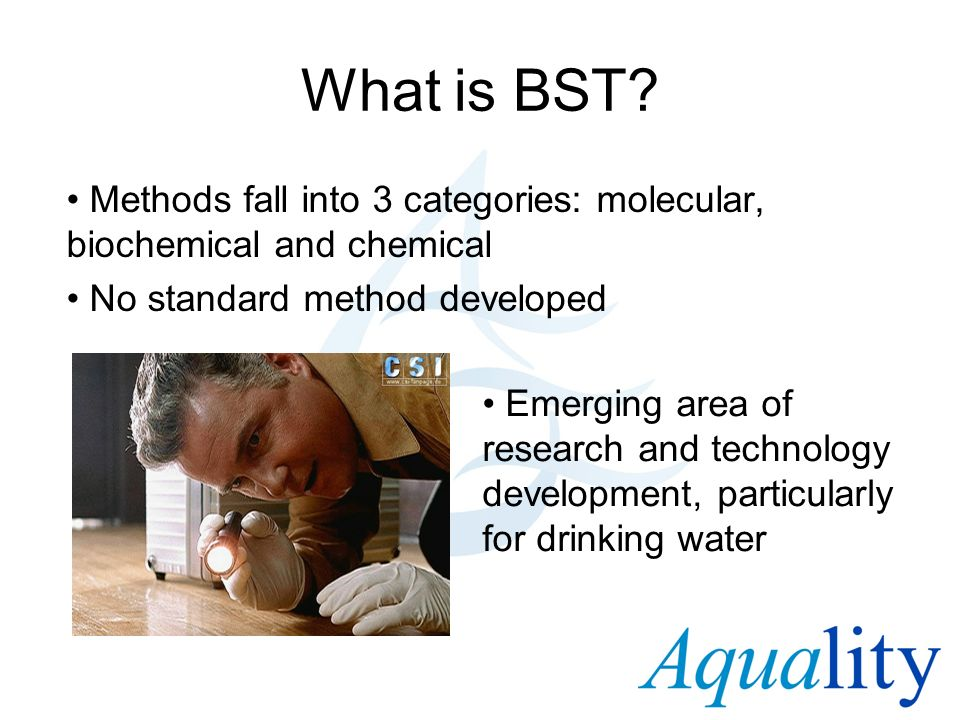 What is BST Methods fall into 3 categories: molecular, biochemical and chemical. No standard method developed.