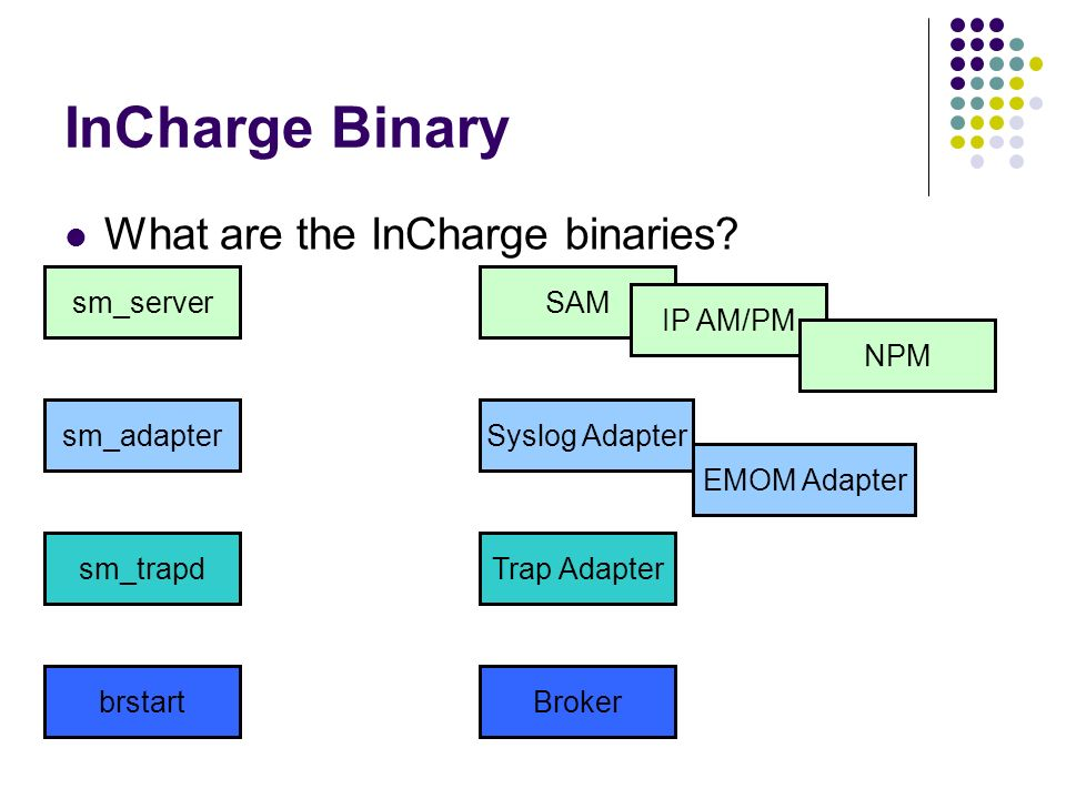 InCharge Binary What are the InCharge binaries sm_server SAM IP AM/PM