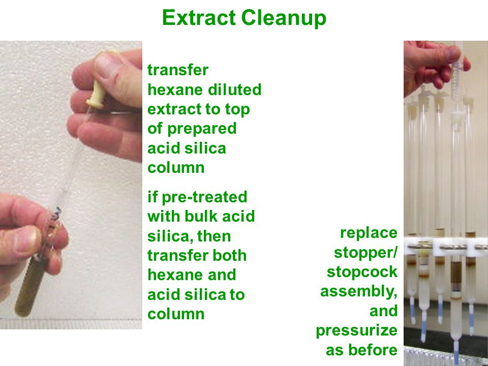 Extract Cleanup transfer hexane diluted extract to top of prepared acid silica column.