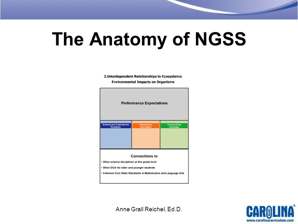The Anatomy of NGSS Anne Grall Reichel, Ed.D.