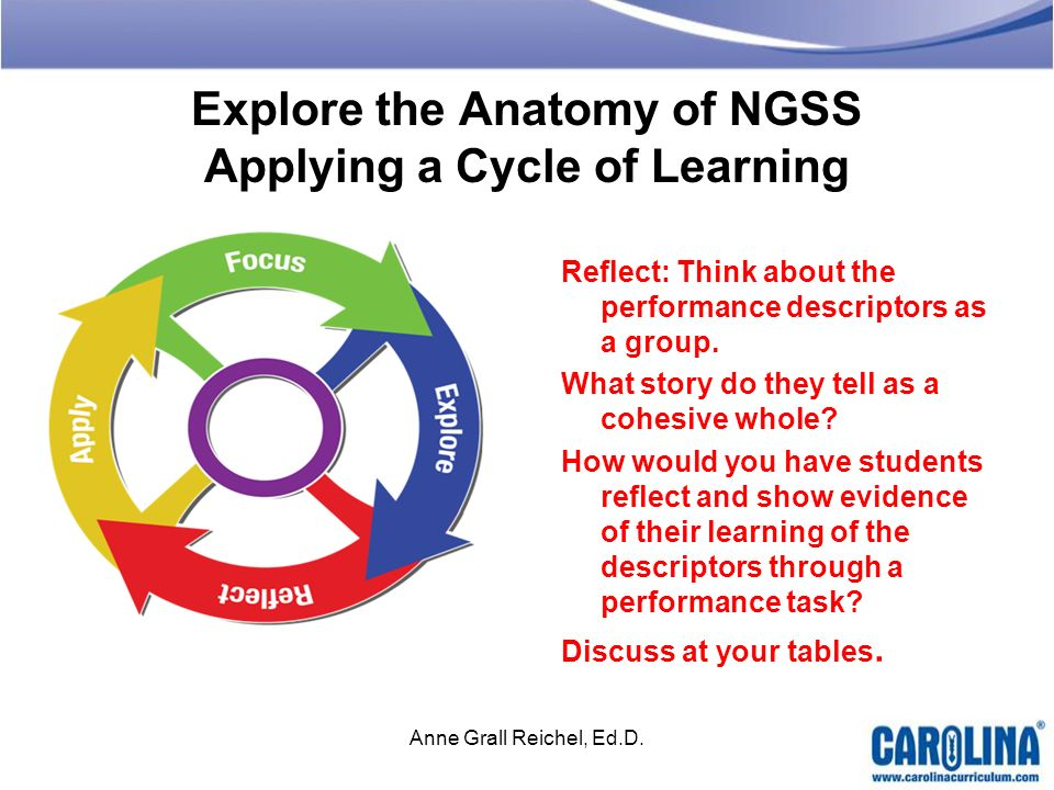 Explore the Anatomy of NGSS Applying a Cycle of Learning