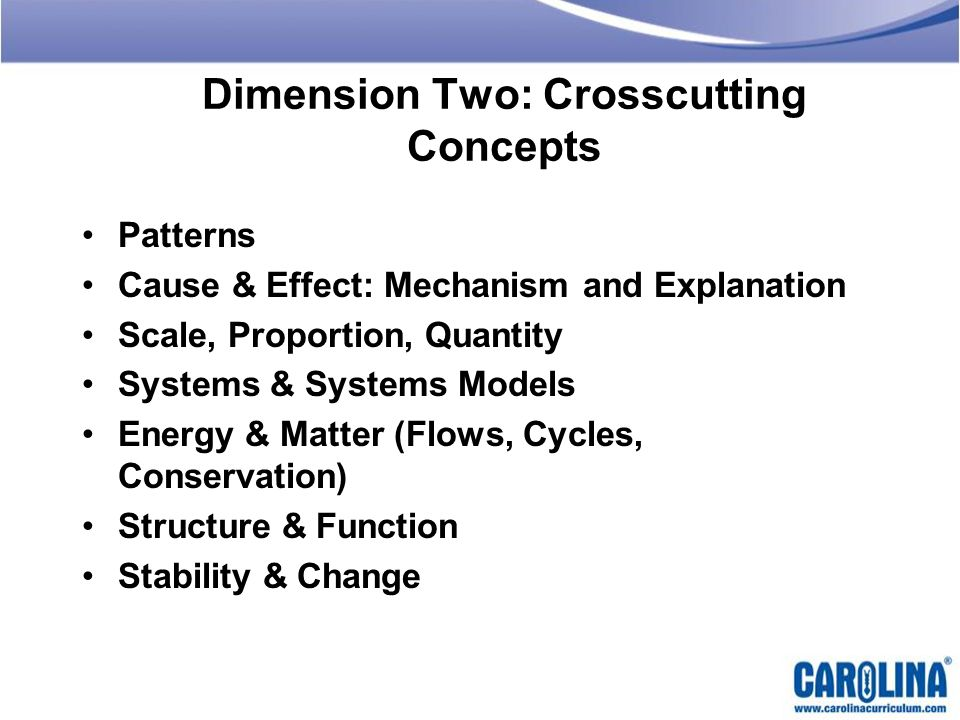 Dimension Two: Crosscutting Concepts