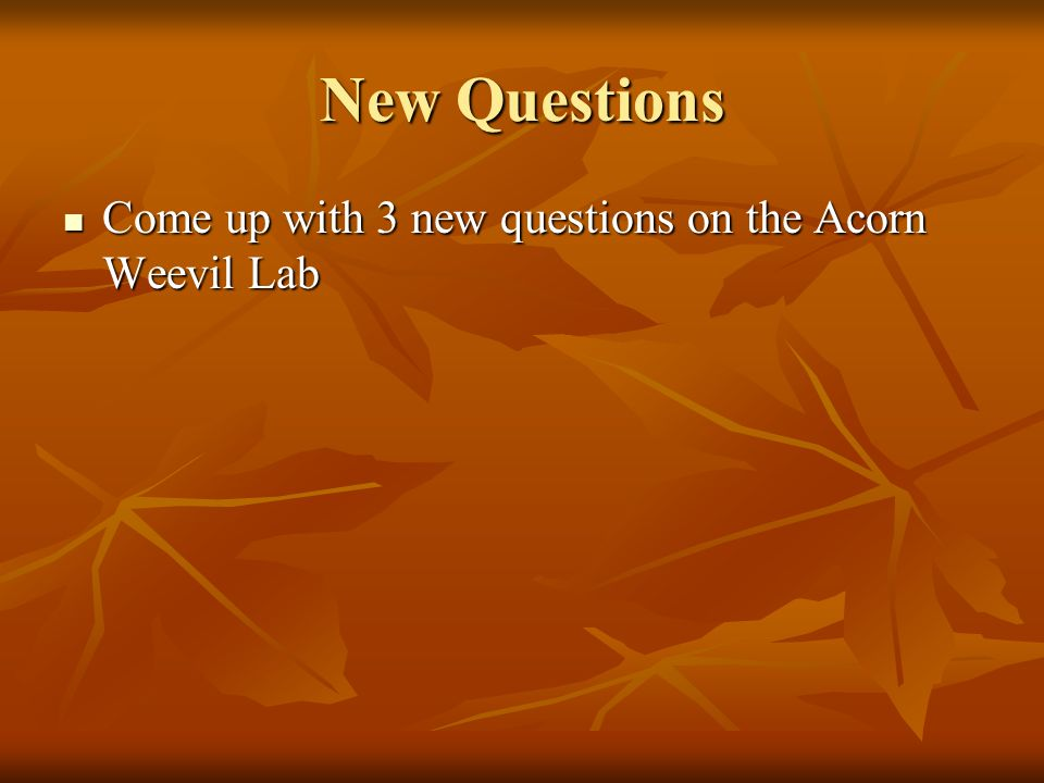 New Questions Come up with 3 new questions on the Acorn Weevil Lab