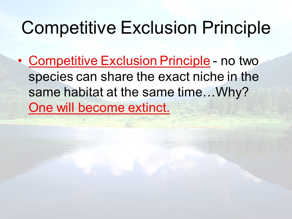 Competitive Exclusion Principle