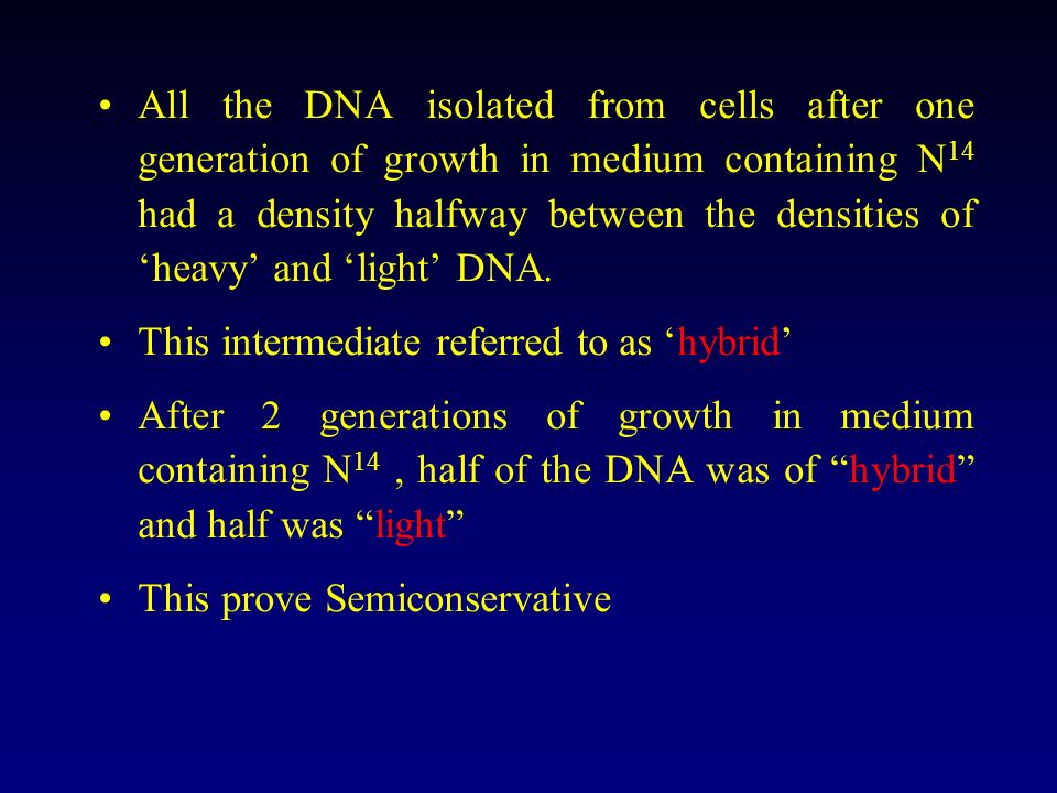 All the DNA isolated from cells after one generation of growth in medium containing N14 had a density halfway between the densities of 'heavy' and 'light' DNA.