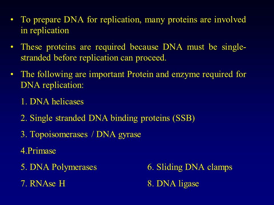 To prepare DNA for replication, many proteins are involved in replication