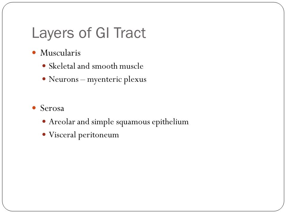 Layers of GI Tract Muscularis Serosa Skeletal and smooth muscle