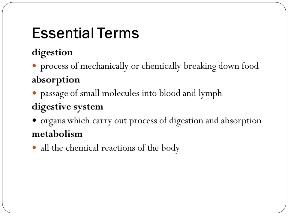 Essential Terms digestion
