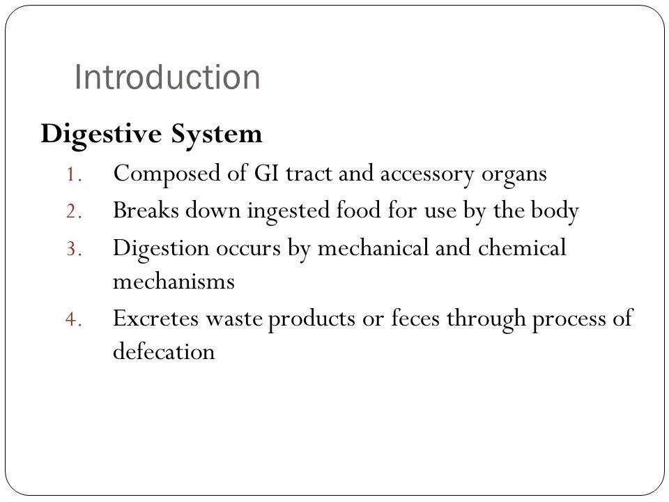 Introduction Digestive System