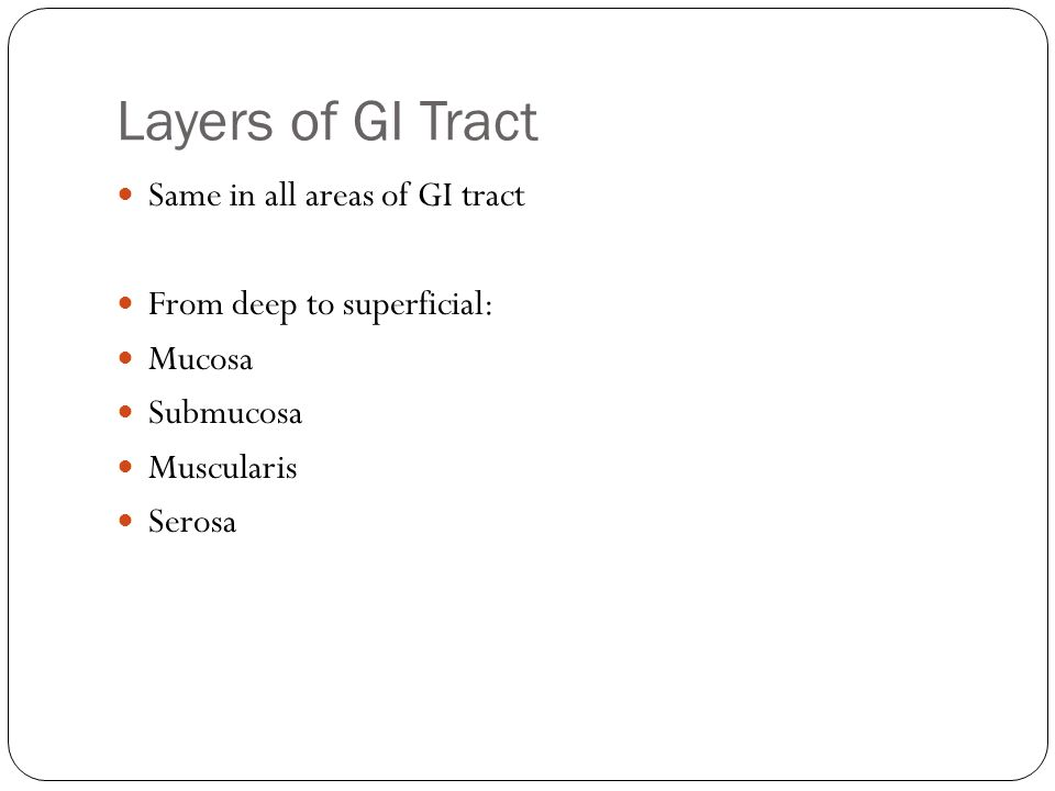 Layers of GI Tract Same in all areas of GI tract