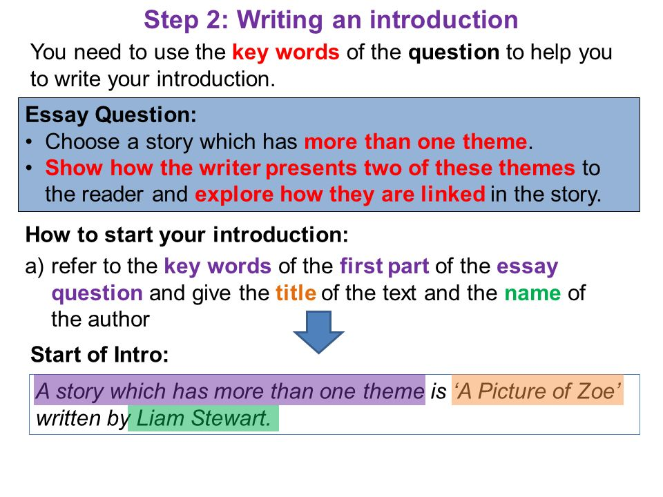 Step 2: Writing an introduction