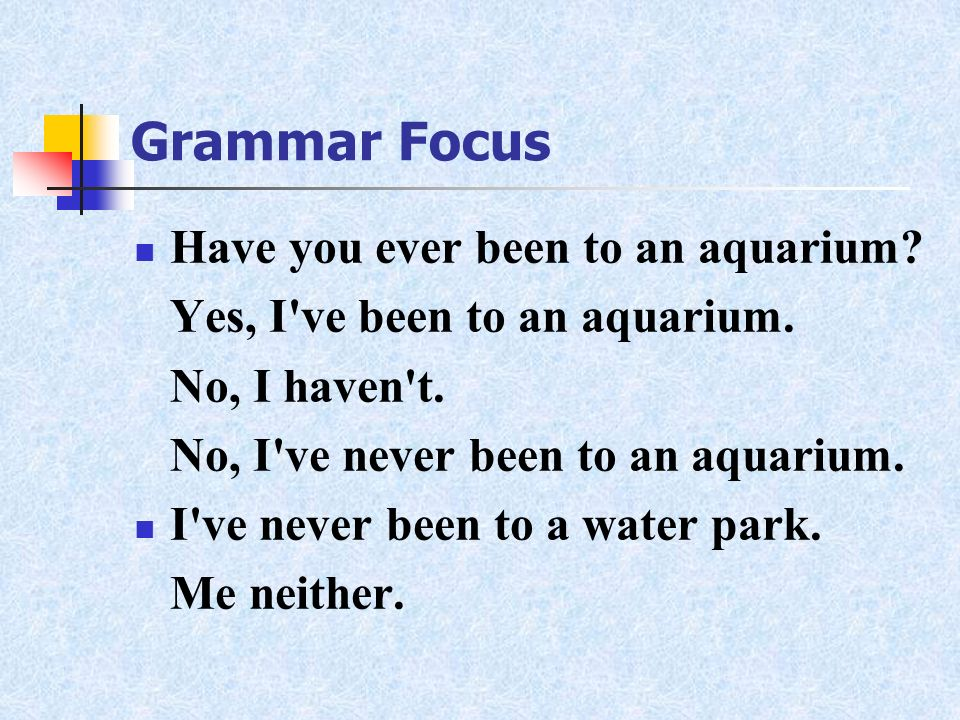 Grammar Focus Have you ever been to an aquarium