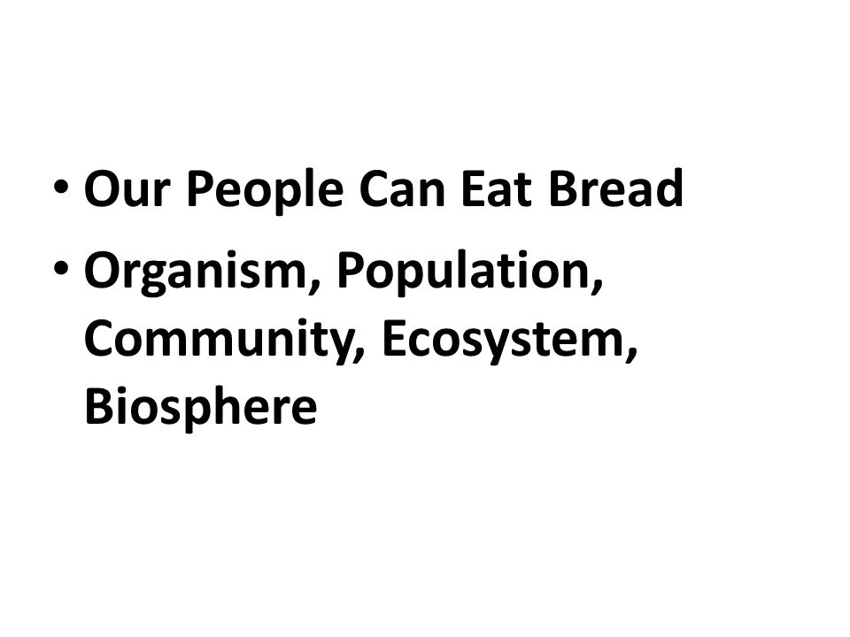Our People Can Eat Bread