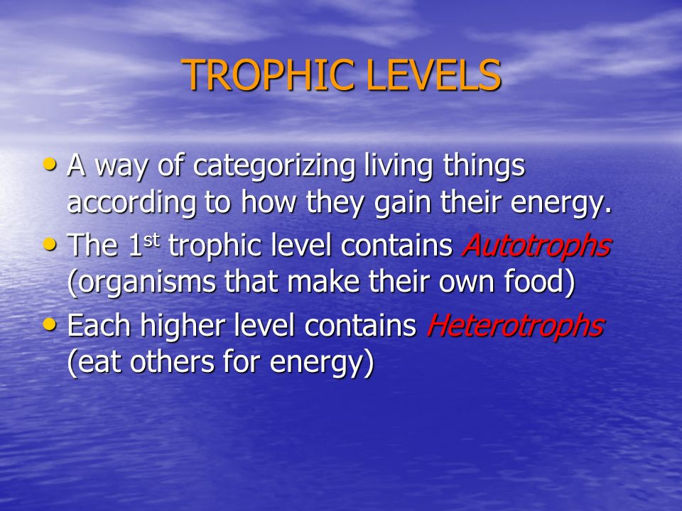 TROPHIC LEVELS A way of categorizing living things according to how they gain their energy.