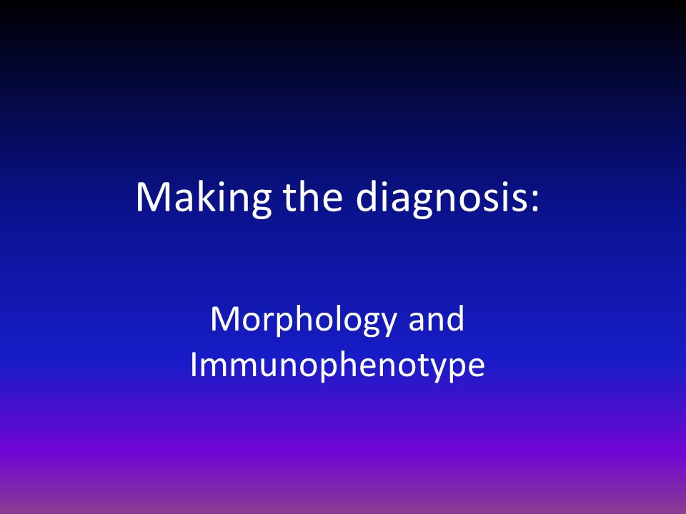 Morphology and Immunophenotype