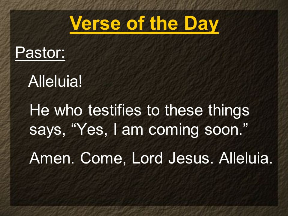 Verse of the Day Pastor: Alleluia!