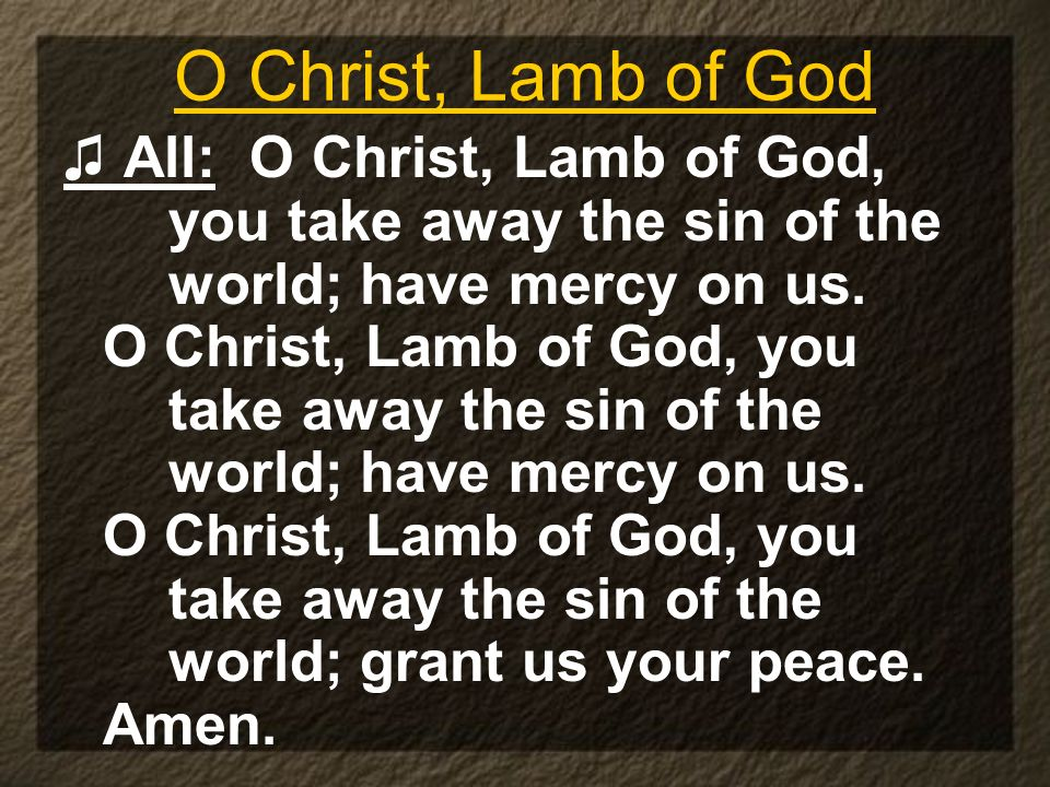 O Christ, Lamb of God ♫ All: O Christ, Lamb of God, you take away the sin of the world; have mercy on us.