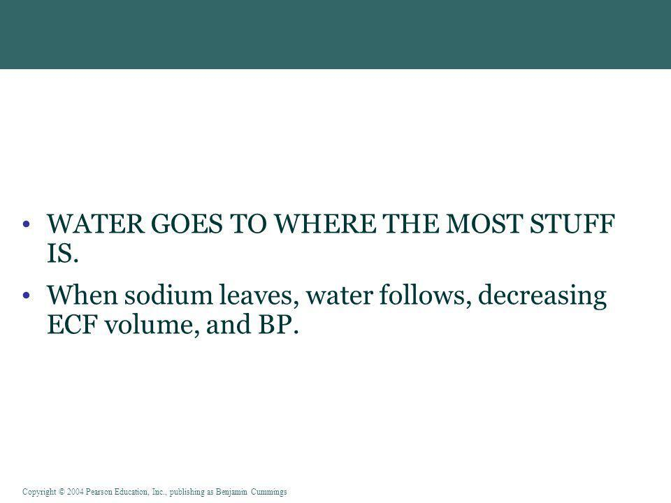 WATER GOES TO WHERE THE MOST STUFF IS.