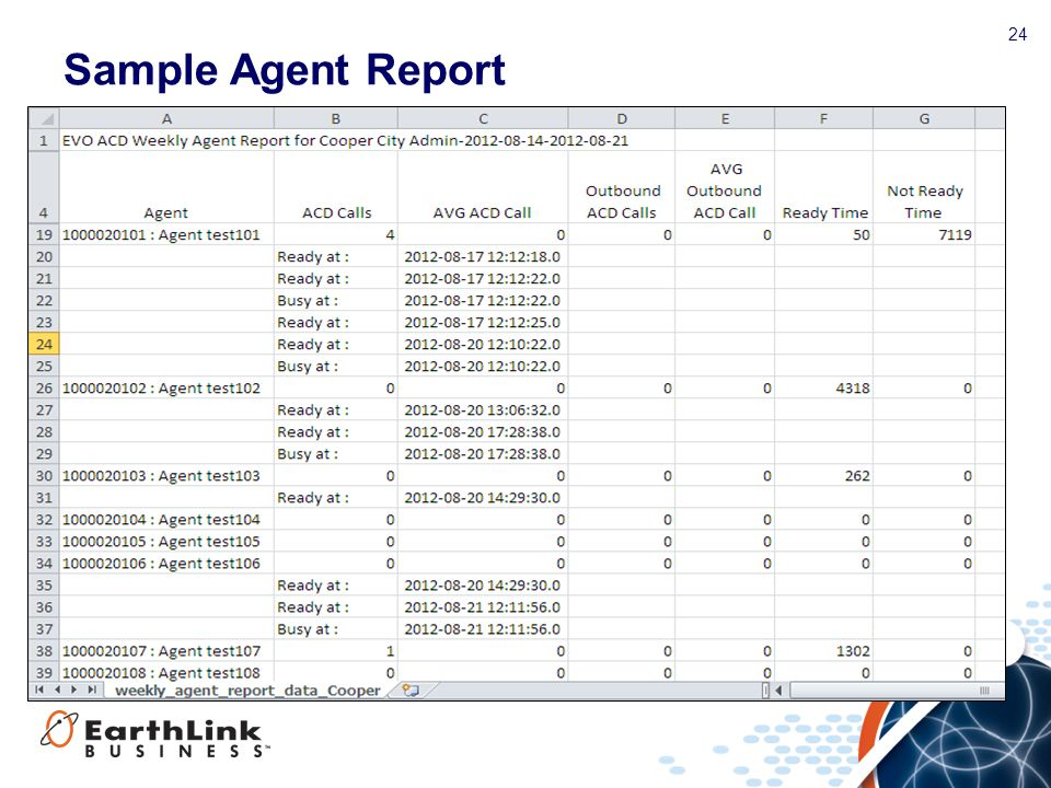 Sample Agent Report