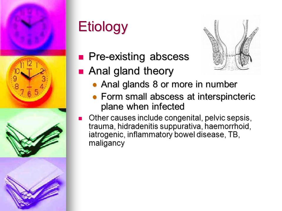 Etiology Pre-existing abscess Anal gland theory