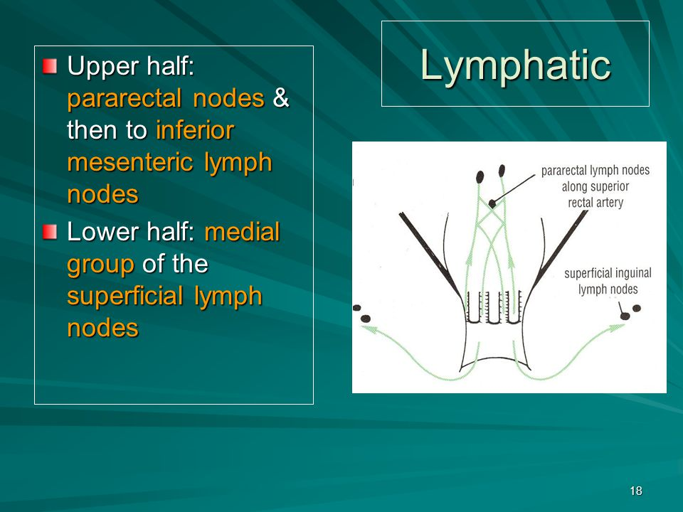 Lymphatic Upper half: pararectal nodes & then to inferior mesenteric lymph nodes.