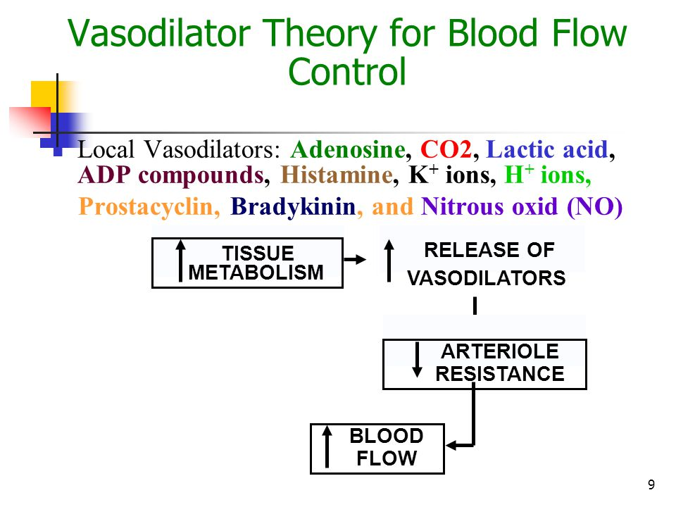 Vasodilator Theory for Blood Flow Control