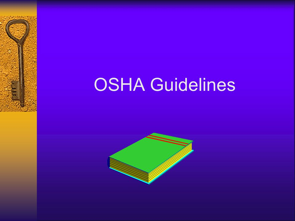 OSHA Guidelines OSHA has developed guidelines to provide information to assist employers in meeting their responsibilities under the OSHA Act.
