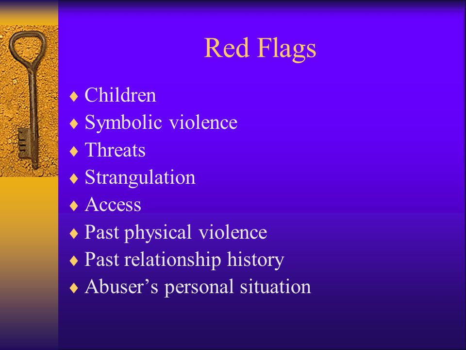 Red Flags Children Symbolic violence Threats Strangulation Access