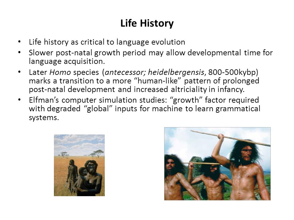 Life History Life history as critical to language evolution