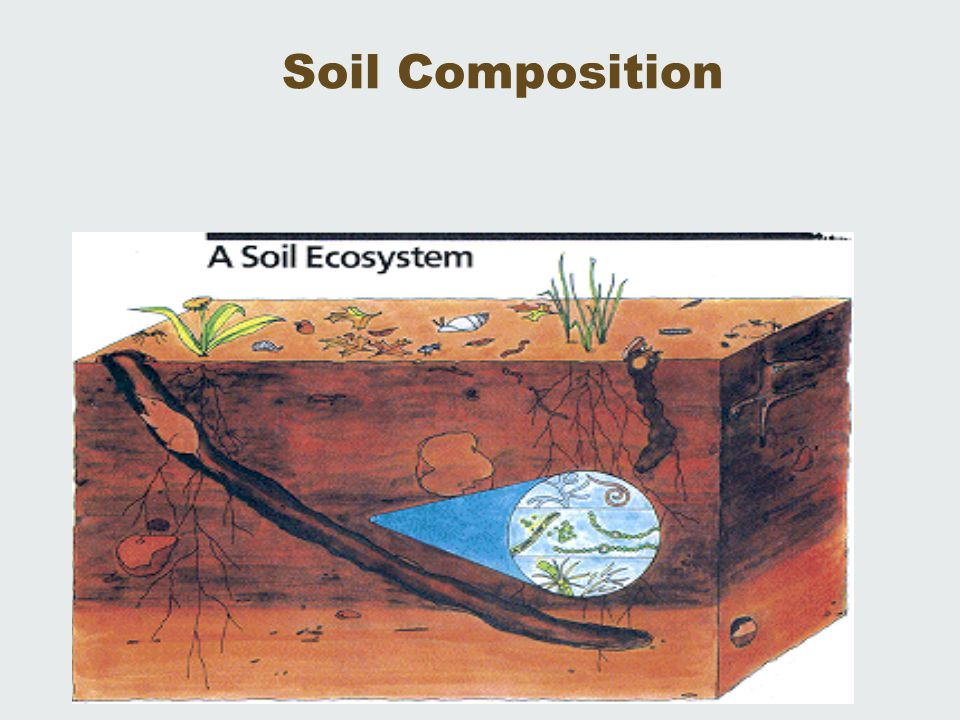 mineral composition of soil pdf