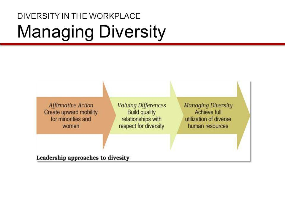 DIVERSITY IN THE WORKPLACE Managing Diversity