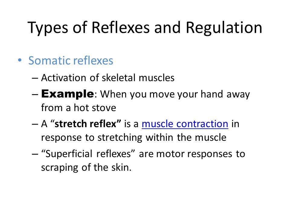 somatic reflex