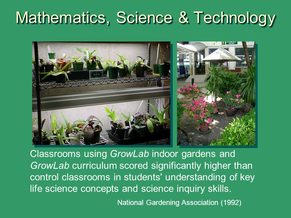Why Garden in New York State Schools? - ppt video online download