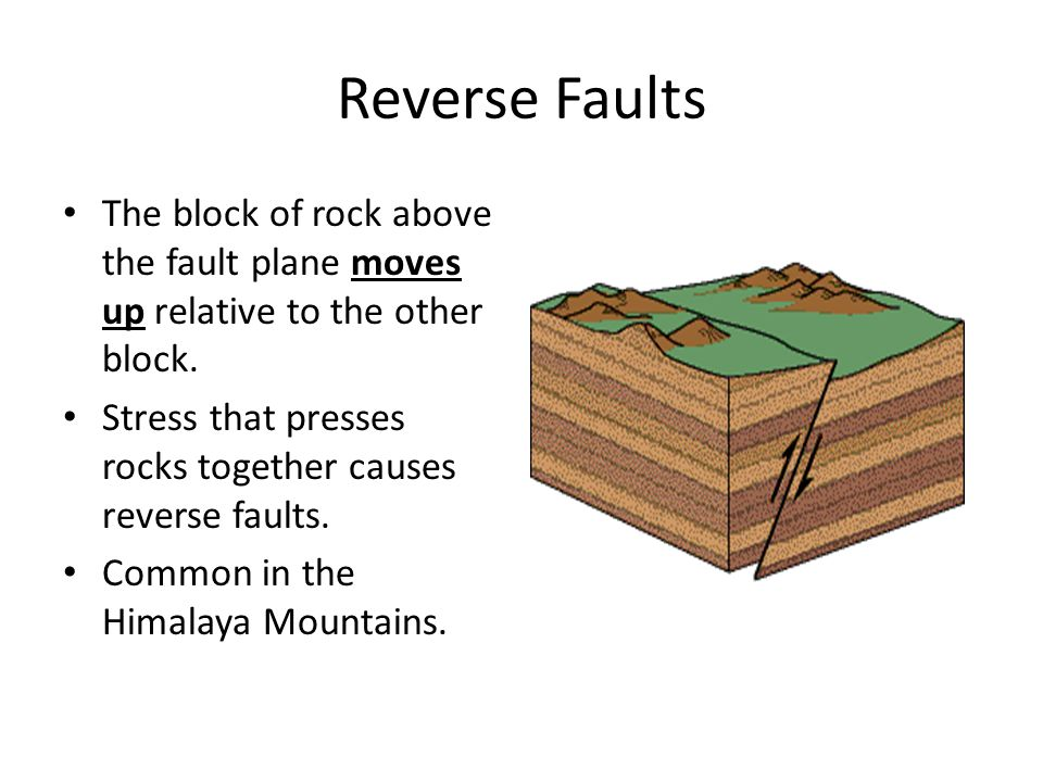 Reverse Faults The block of rock above the fault plane moves up relative to the other block.
