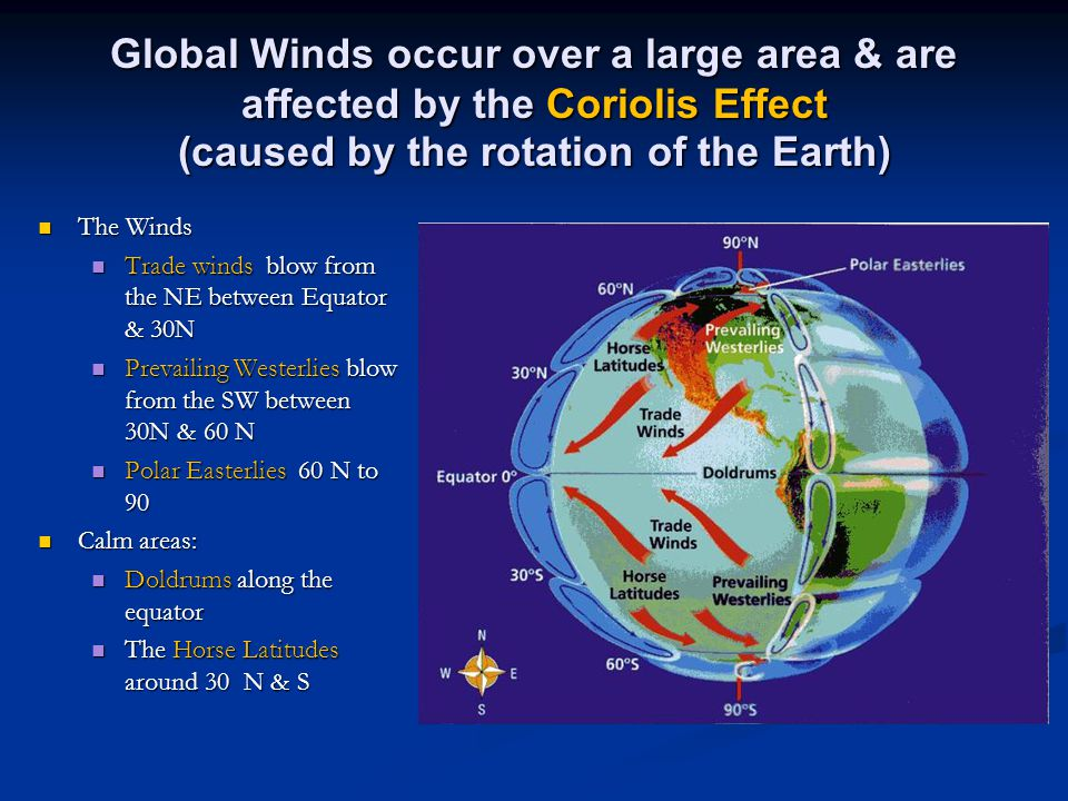 Global Winds occur over a large area & are affected by the Coriolis Effect (caused by the rotation of the Earth)