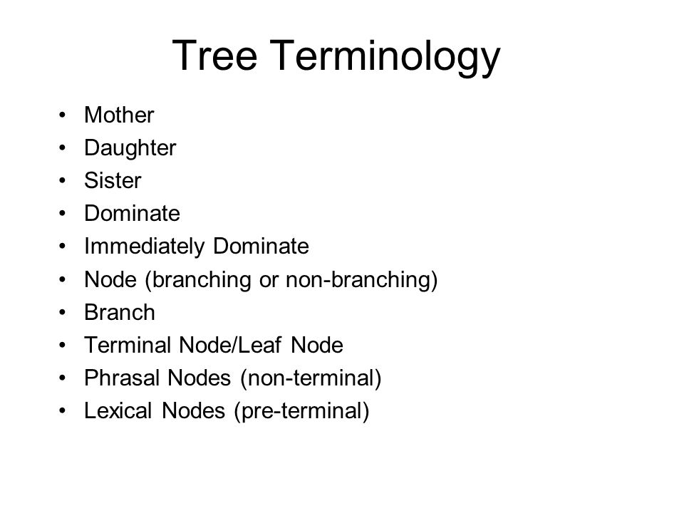 Tree Terminology Mother Daughter Sister Dominate Immediately Dominate