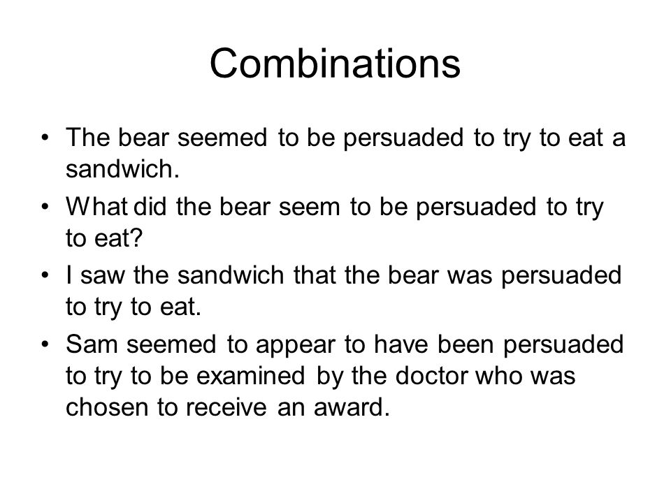 Combinations The bear seemed to be persuaded to try to eat a sandwich.