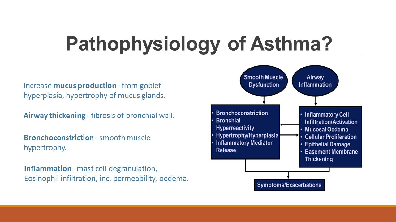 Pathophysiology of COPD and Asthma - ppt video online download