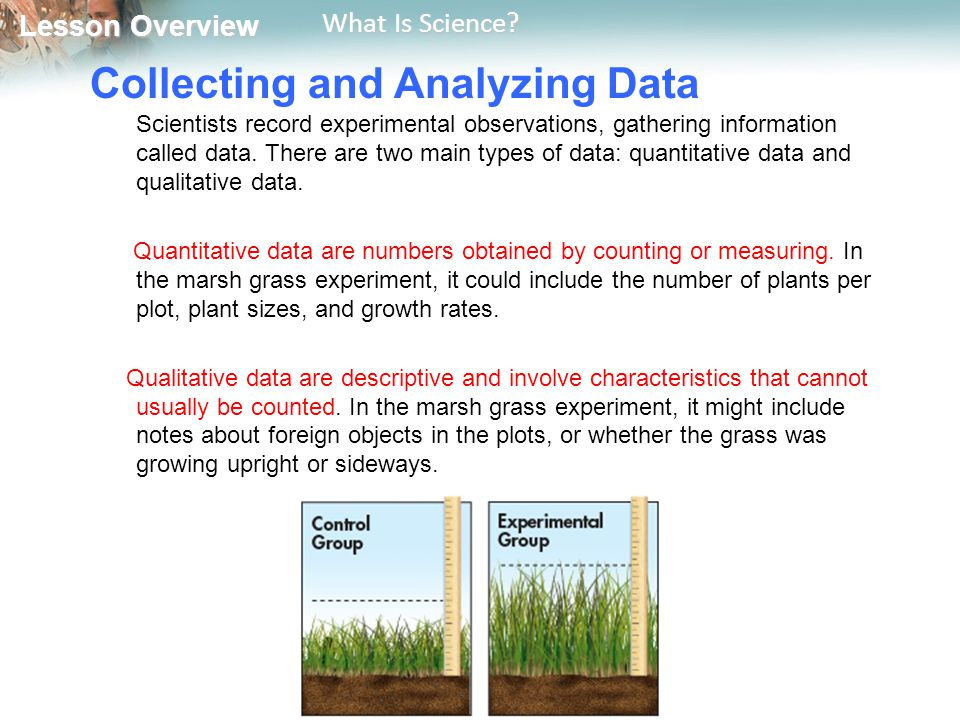 Collecting and Analyzing Data