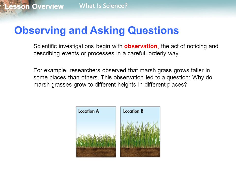 Observing and Asking Questions