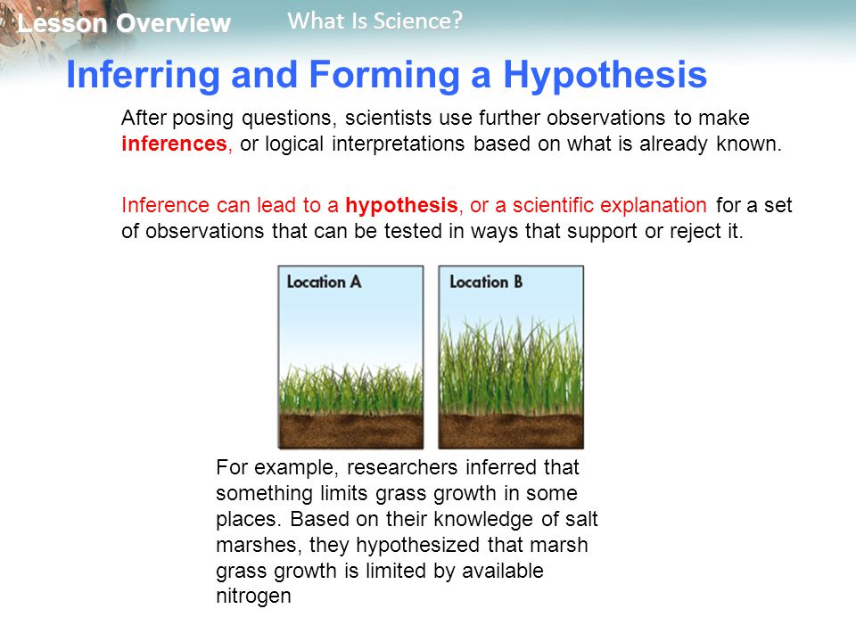 Inferring and Forming a Hypothesis