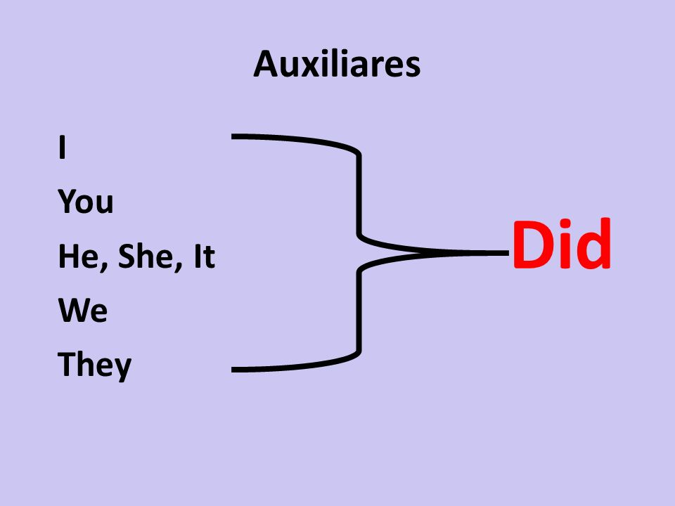 Auxiliares I You He, She, It We They Did
