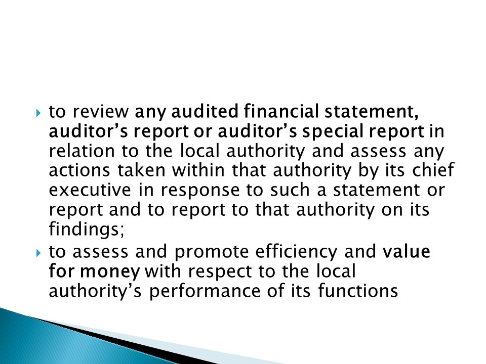 to review any audited financial statement, auditor's report or auditor's special report in relation to the local authority and assess any actions taken within that authority by its chief executive in response to such a statement or report and to report to that authority on its findings;