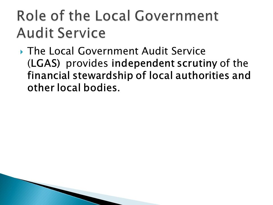 Role of the Local Government Audit Service