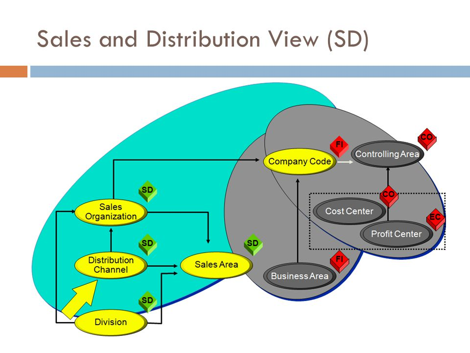 Sales and Distribution View (SD)