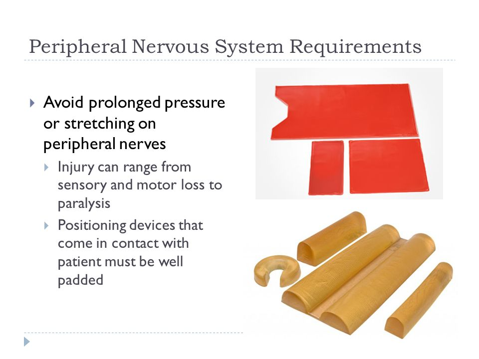 Peripheral Nervous System Requirements