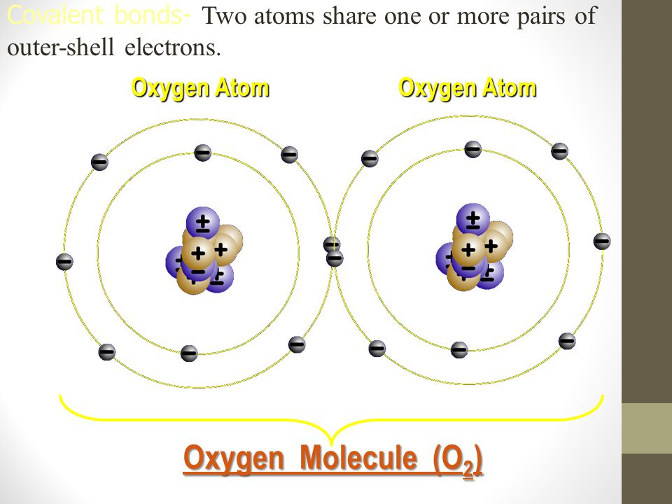 Covalent bonds- Two atoms share one or more pairs of outer-shell electrons.
