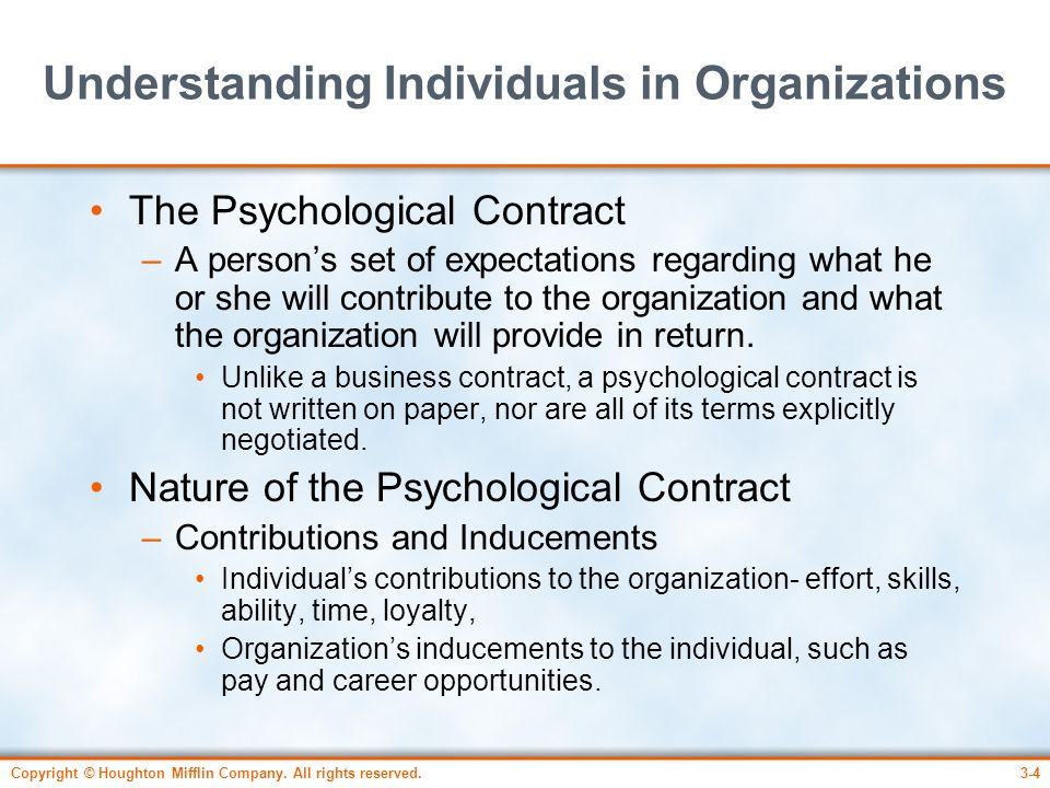 Understanding Individuals in Organizations