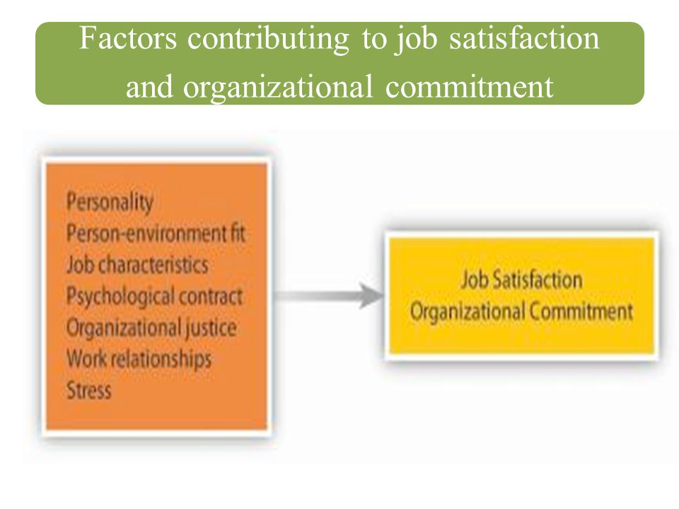 Factors contributing to job satisfaction